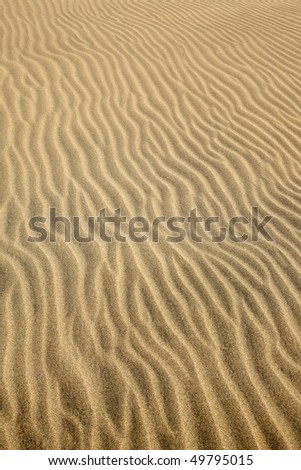 patterns left by the wind on a sand dune maspalomas gran canaria