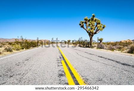 Paved Road at Joshua Tree National Park - stock photo
