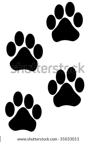 paw prints - stock photo