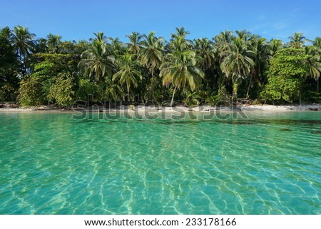 Peaceful Caribbean beach with tropical vegetation and clear water viewed from the sea, Zapatillas islands, Bocas del Toro, Panama