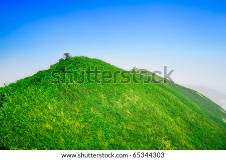 Peaceful green mountains covered of grass and trees under the clear blue sky. - stock photo