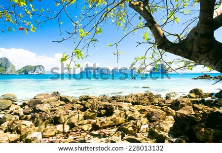 Peaceful Paradise Cozy Landscape  - stock photo
