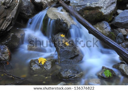 peaceful picture of water rushing over rocks with colorful leaves, yosemite falls, california, usa - stock photo