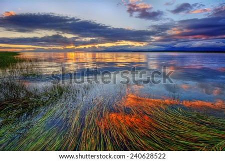 Peaceful river sunset with long grass submerged in water - stock photo