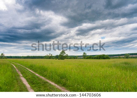 Peaceful summer rural landscape in wide field with country road