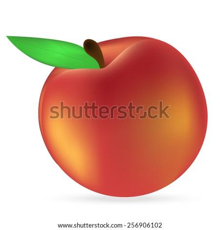 peach on a white background - stock photo