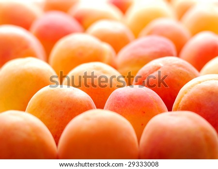 Peaches in rows on a flat surface - stock photo