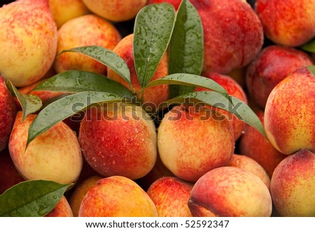 peaches with leaf - stock photo