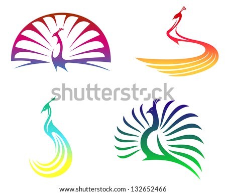 Peacock birds with colorful feathers isolated on white for mascot or any another design. Vector version also available in gallery - stock photo