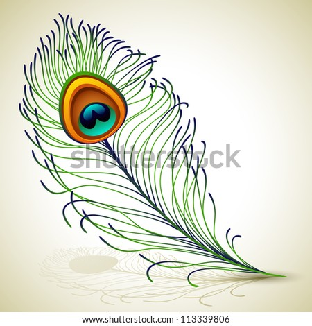 peacock feather - raster version - stock photo