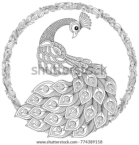 Peacock Zentangle Style Adult Antistress Coloring Stock