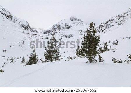 Peak in the mountain covered with snow  - stock photo