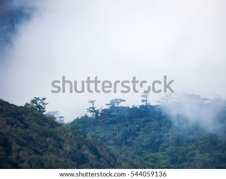 Peaks of hills are sticking out from foggy background