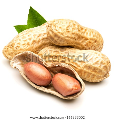peanut isolated on white background - stock photo
