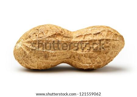 Peanut isolated on white background close up - stock photo