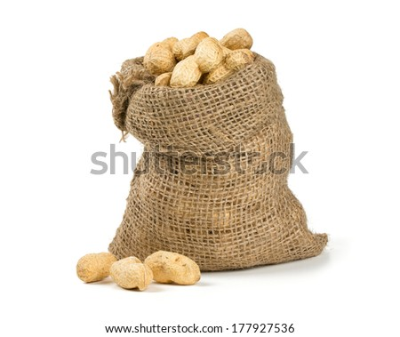 peanuts in a miniature burlap bag isolated on white