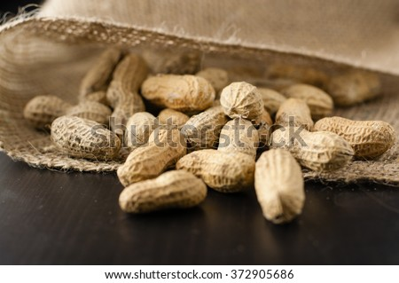 Peanuts in shell in a jute cloth bag - stock photo