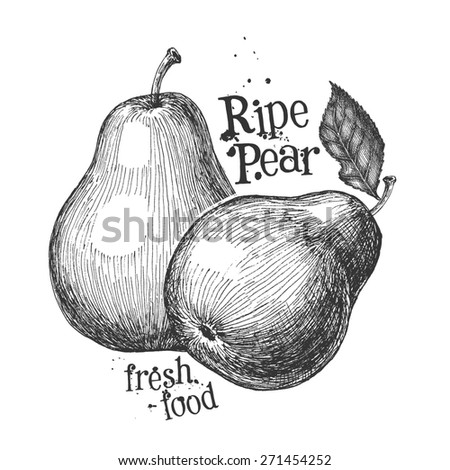 pear on a white background. sketch - stock photo