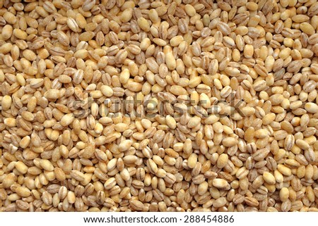 Pearl barley as an abstract background texture - stock photo