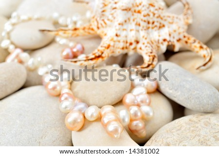 pearl necklace and seashell over stones