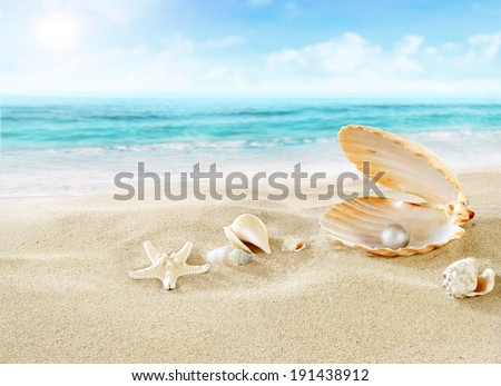Pearl on the beach. - stock photo