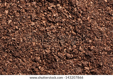 peat - stock photo