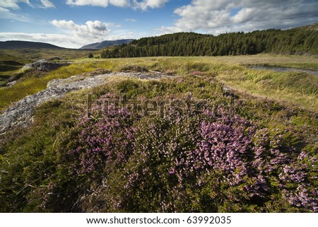 Peatlands in the county of Connemara, Ireland - stock photo