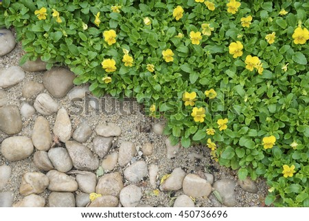 pebble and flower background - stock photo