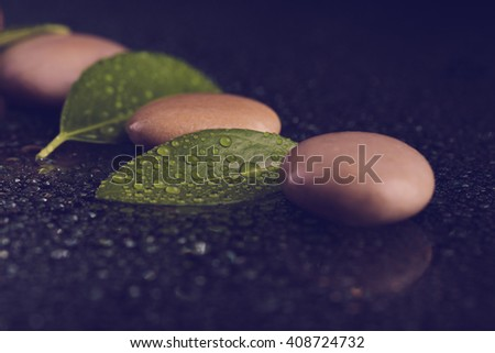 pebble stones and green leaf with water drop, ZEN stone, on black background, spa tranquil scene concept, retro color pastel tone background - stock photo