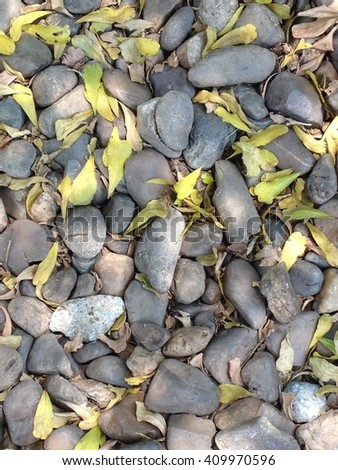 Pebbles mixed with small dried leaves