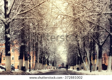 pedestrian pathway tree winter - stock photo