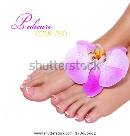 Pedicure with pink orchid flower isolated on white. Beautiful female feet with french manicure. Foot care. Spa - stock photo