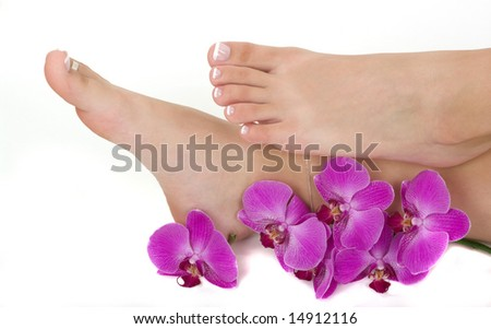 Pedicured feet and orchids - stock photo