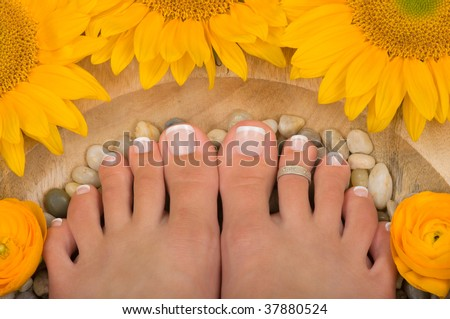 Pedicured feet in a spa - stock photo