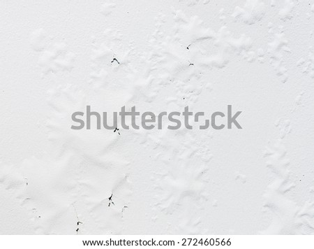 Peeling white walls from wet weather in the house. - stock photo