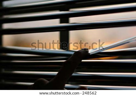 peering out - stock photo