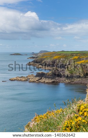 Pembrokeshire Coastal Path Caerfai Bay to St Non`s West Wales UK near St Davids and in the National Park