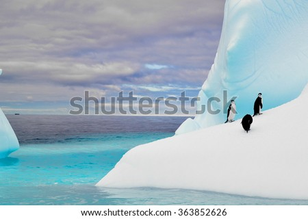 Penguins in iceberg in antarctica pole  - stock photo