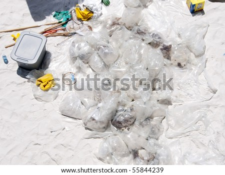 PENSACOLA BEACH - JUNE 23:  Oil-soaked debris lies collected from the beaches of northwest Florida on June 23, 2010 in Pensacola, FL. - stock photo