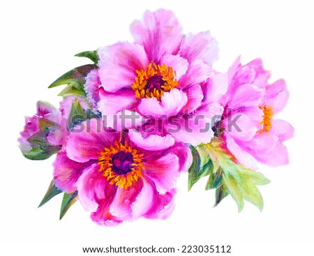 Peonies isolated on white, oil painting - stock photo