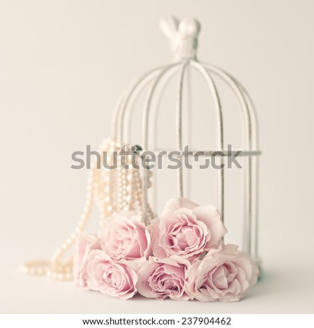 Peonies still life  - stock photo