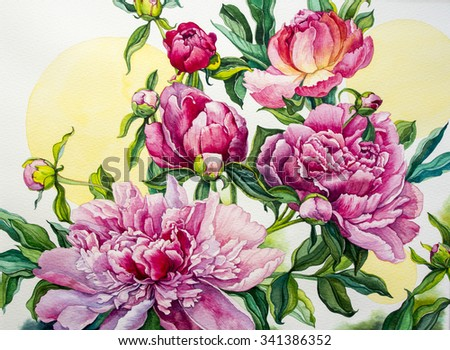 Peonies. Watercolor illustration. - stock photo