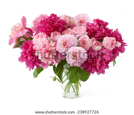 Peony bunch isolated on white background - stock photo