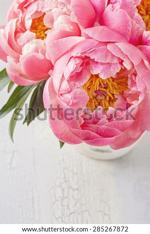Peony flower on a wooden background - stock photo