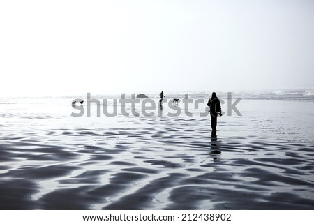 People and dogs walking and playing along the ocean coast - stock photo