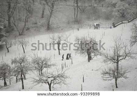 People are walking in snow in park, Prague. - stock photo