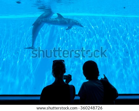 People enjoying watching dolphins - stock photo