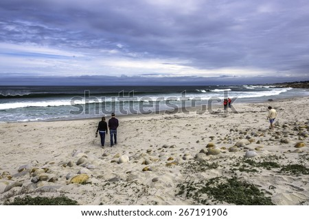 people, friends, young couple walking on the beach, enjoying time together