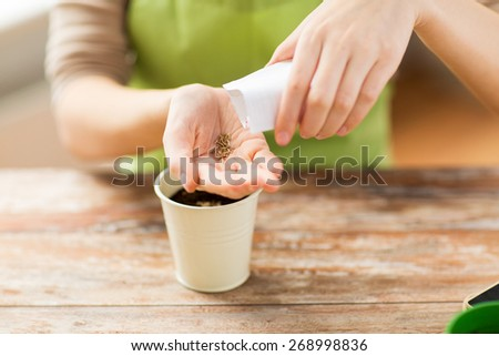 people, gardening, seeding and profession concept - close up of woman pouring seeds from paper bag to hand - stock photo