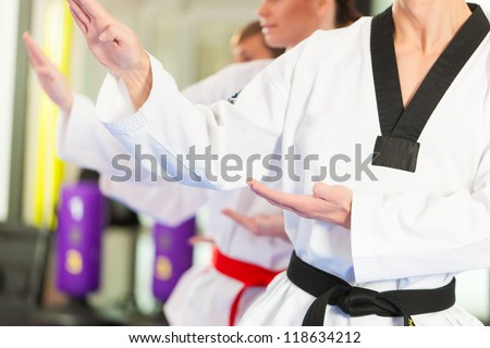 People in a gym in martial arts training exercising Taekwondo, the trainer has a black belt - stock photo